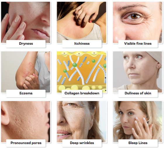 Ageless Natural Beauty Lifting Patches